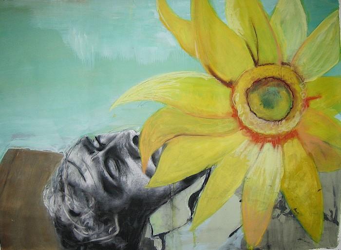 sunflower death